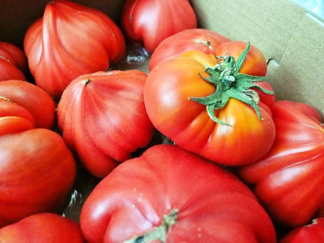 v120624-tomato03.jpg